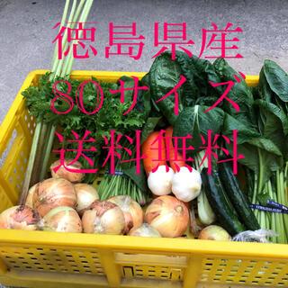 新鮮野菜詰め合わせ(野菜)