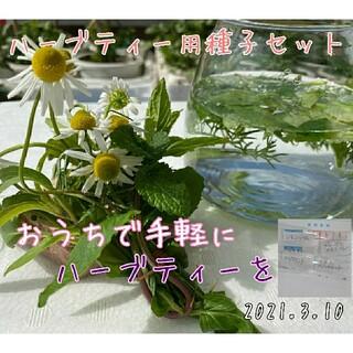 ハーブティー用種子セット ハーブの種 野菜の種 家庭菜園 水耕栽培 種子 種(野菜)