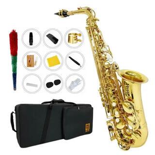 アルトサックス11点セット E Saxophone ゴールドラッカー ケース付き(サックス)