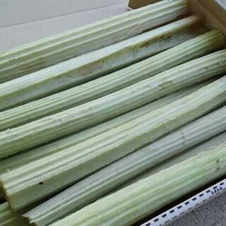 山菜 天然ふき(野菜)