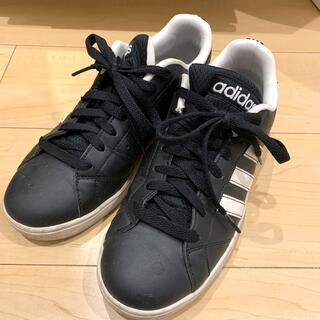 adidas - adidas ✴︎ スニーカー
