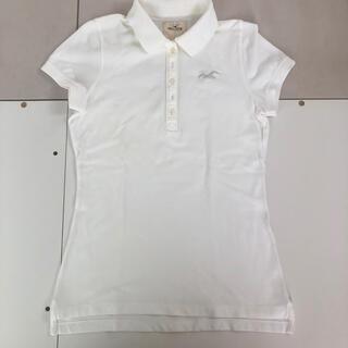 ホリスター(Hollister)のHOLLISTER ポロシャツ 白 レディース(ポロシャツ)