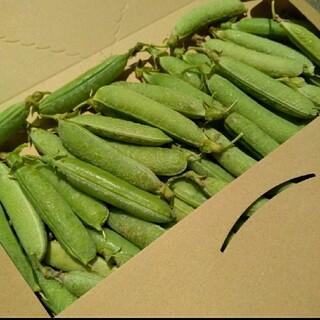 サトミ様2箱目 採れたて グリーンピース 鞘付き 鹿児島産 無農薬 無化学肥料(野菜)