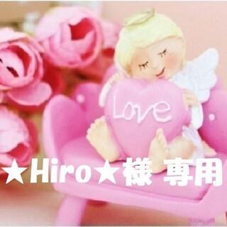 【★Hiro★様 専用】(その他)