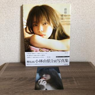 感情の構図 小林由依1st写真集