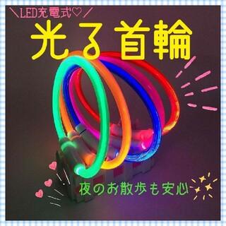 ☆新色追加☆光る首輪 犬猫用 ペット用 夜の散歩 LED 充電式 事故防止(リード/首輪)
