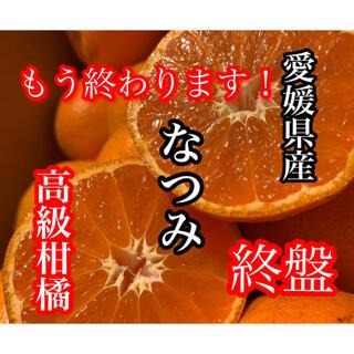 愛媛県産 なつみ(フルーツ)