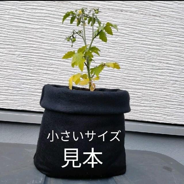 大きいサイズ♡フェルトプランター♡ブラウン×2枚セット♡植木鉢♡鉢カバー ハンドメイドのフラワー/ガーデン(プランター)の商品写真