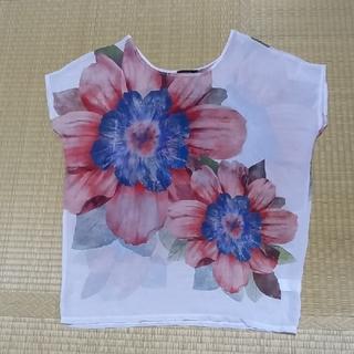 rienda - rienda  シアー素材  大きな花柄 チュニック