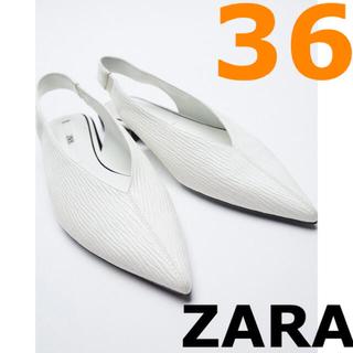 ZARA - 【ZARA】ザラ 36 フラット スリング バックポインテッド シューズ
