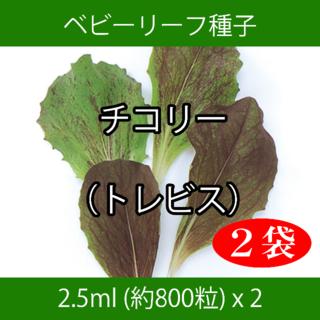 ベビーリーフ種子 B-12 チコリー(トレビス) 2.5ml x 2袋(野菜)