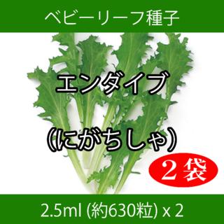ベビーリーフ種子 B-17 エンダイブ(にがちしゃ) 2.5ml約630粒x2袋(野菜)