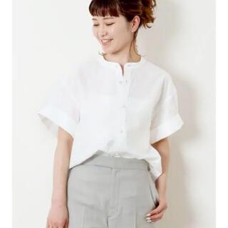 Spick and Span - パールボタンタックスリーブシャツ◆ 定価¥14,300