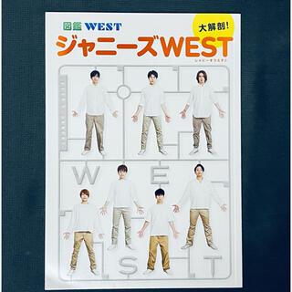 ジャニーズウエスト(ジャニーズWEST)のジャニーズWEST 図鑑WEST(アート/エンタメ/ホビー)