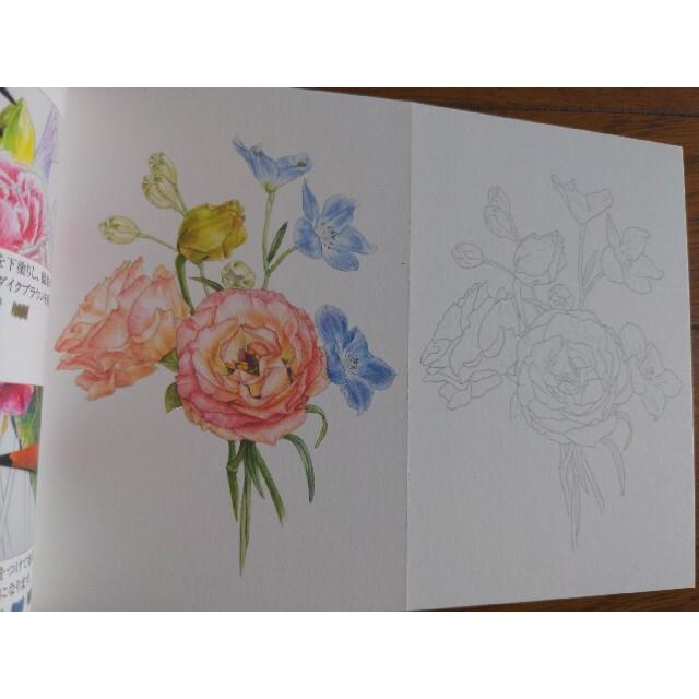 大人の塗り絵 POSTCARD 色鉛筆BOX 花・風景・動物編  エンタメ/ホビーの本(アート/エンタメ)の商品写真