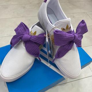 アディダス(adidas)のadidas 靴紐(その他)