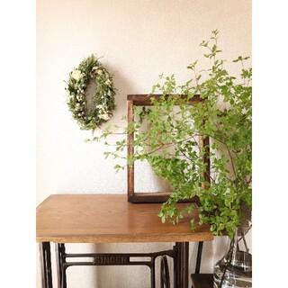初夏に飾るグリーン。爽やかな芍薬のオーバルリース。ドライフラワーリース。季節の花(リース)
