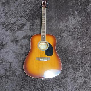 アコースティックギターVDG 01 TS