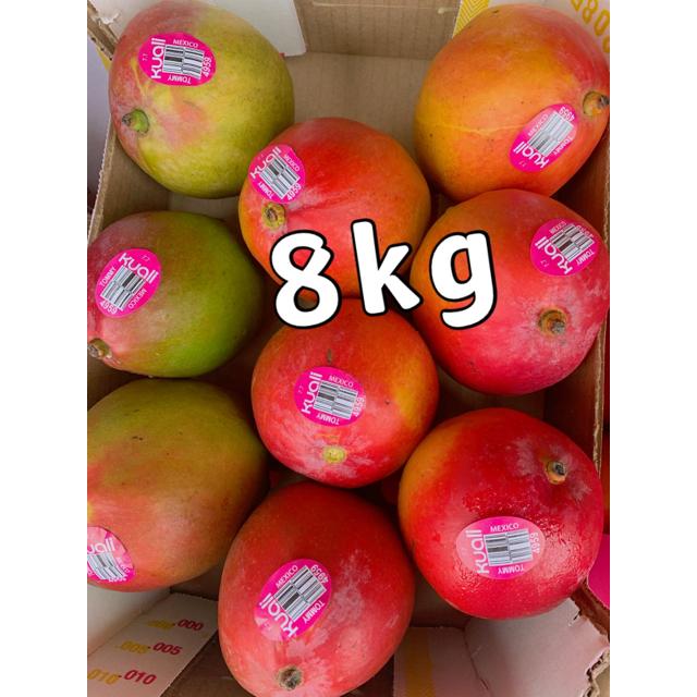 コストコ(コストコ)のコストコ マンゴー 大玉 8kg 食品/飲料/酒の食品(フルーツ)の商品写真