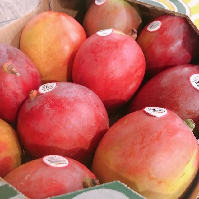 ◼️数量限定◼️ アップルマンゴー  4kg  大玉 マンゴー コストコ 食品/飲料/酒の食品(フルーツ)の商品写真