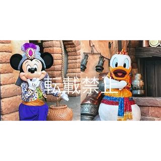 ディズニー(Disney)のディズニーシー アラビアンコースト フォトファン ミッキー ドナルド(印刷物)
