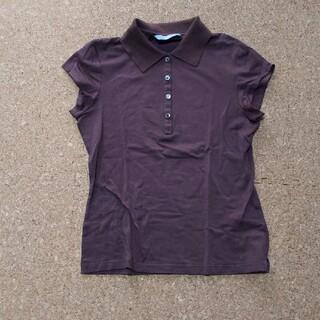 セオリーリュクス(Theory luxe)のセオリーリュクス(Tシャツ(半袖/袖なし))