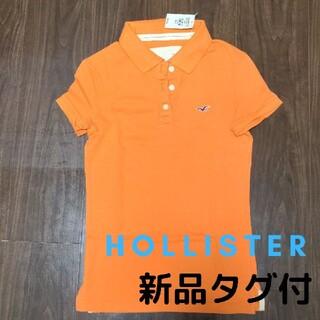 ホリスター(Hollister)のHollister ポロシャツ(ポロシャツ)