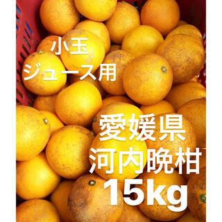愛媛県 宇和ゴールド 河内晩柑 ジュース用 15kg(フルーツ)