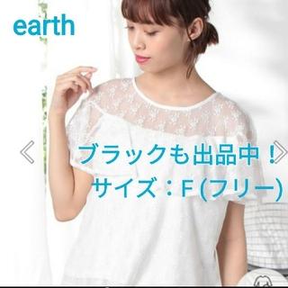 アースミュージックアンドエコロジー(earth music & ecology)の総レース花柄ブラウス(シャツ/ブラウス(半袖/袖なし))