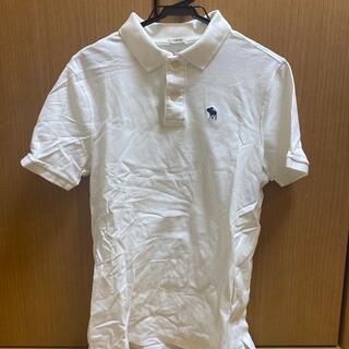 アバクロンビーアンドフィッチ(Abercrombie&Fitch)のポロシャツ (ポロシャツ)