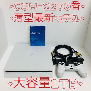 PlayStation4 - 【美品・大容量1TB】ps4 本体  2200 PlayStation®4