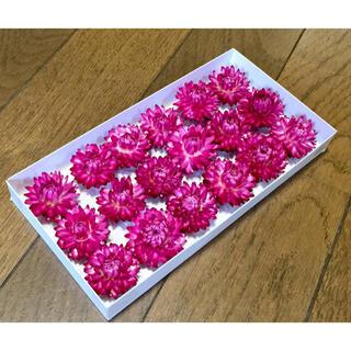 銀の紫陽花が作った美しい貝細工のドライフラワー(ドライフラワー)