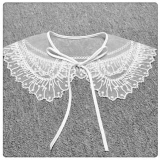刺繍入りのビッグ付け襟♡新品未使用品 白 ビッグカラー 大きいつけ衿 トレンド(つけ襟)