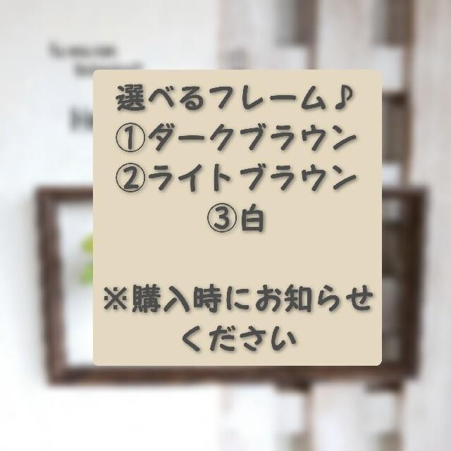 専用*ガラスボトルのボタニカルフレーム (多肉×3個) ハンドメイドのフラワー/ガーデン(その他)の商品写真