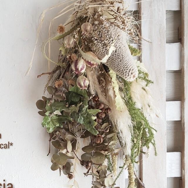 専用*バンクシア&風船ポピー  ドライフラワースワッグ ハンドメイドのフラワー/ガーデン(ドライフラワー)の商品写真