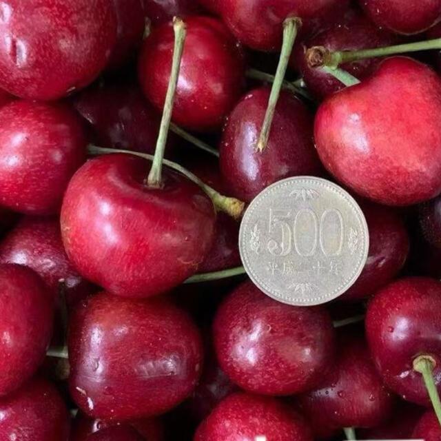 アメリカンチェリー2kg 大きいサイズ 食品/飲料/酒の食品(フルーツ)の商品写真