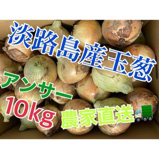 新玉ねぎ【淡路島産玉葱】品種 アンサー 10kg 秀品