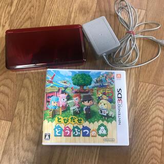 ニンテンドー3DS - 任天堂3DS 本体 とびだせどうぶつの森ソフト