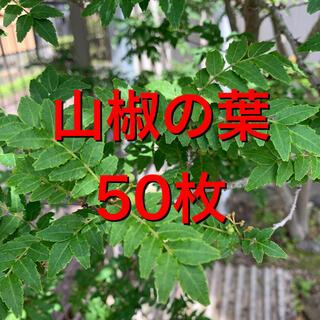 山椒の葉 木の芽 50枚(野菜)