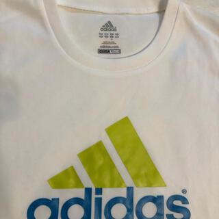 アディダス(adidas)のadidas アディダス 白Tシャツ  新品・未使用(Tシャツ(半袖/袖なし))