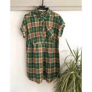 グローブ(grove)のgrove 半袖カットソー グリーン シャツ M(カットソー(半袖/袖なし))