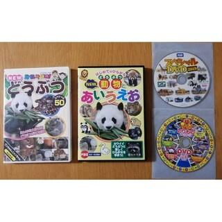 動物DVD4枚セット