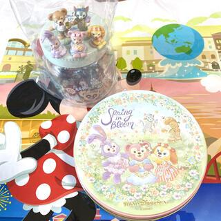 ディズニー(Disney)の【新品】ディズニー ダッフィー&フレンズ スプリング・イン・ブルーム お菓子(菓子/デザート)