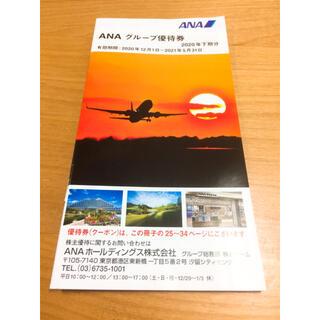 ANA グループ優待券 冊子 割引券 アナ エーエヌエー 全日空(その他)