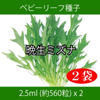 ベビーリーフ種子 B-19 晩生ミズナ 2.5ml 約560粒 x 2袋(野菜)