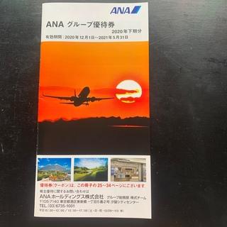 ANAグループ優待券  (その他)