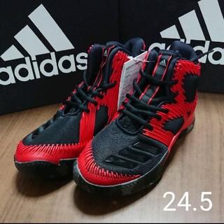 アディダス(adidas)の新品☆adidas☆アディダス☆バスケ☆バッシュ☆シューズ☆24.5(バスケットボール)
