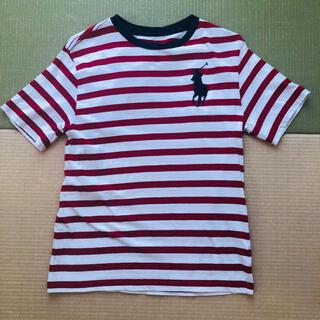 ラルフローレン(Ralph Lauren)のRalph Lauren ボーダーTシャツ サイズ150(Tシャツ/カットソー)