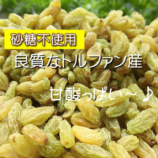 ドライフルーツ グリーンレーズン 45g レーズン 無添加 砂糖不使用(菓子/デザート)