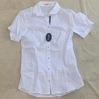 シマムラ(しまむら)のカッターシャツ(半袖)(シャツ/ブラウス(半袖/袖なし))